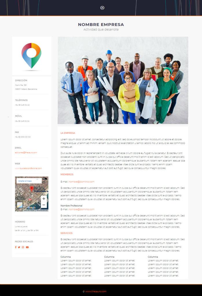 Buscador Profesional - www.buscadorprofesional.com - Thesauro Ediciones, S.L.